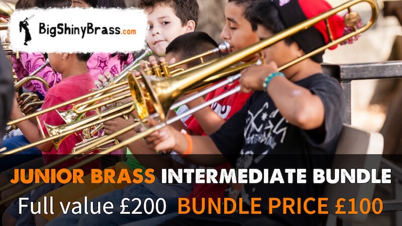 Intermediate Band bundle